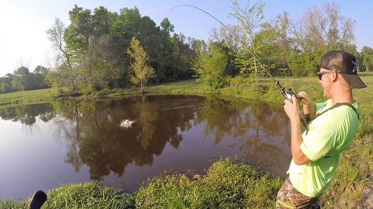 pond fishing tips