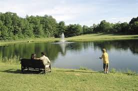 fishing in ponds