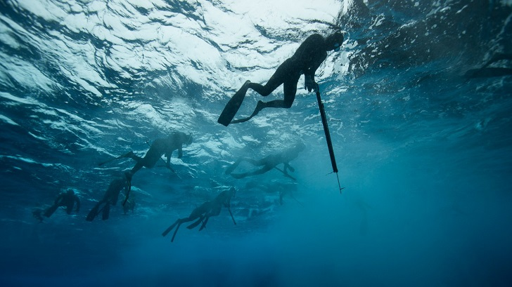 spearfishing tips